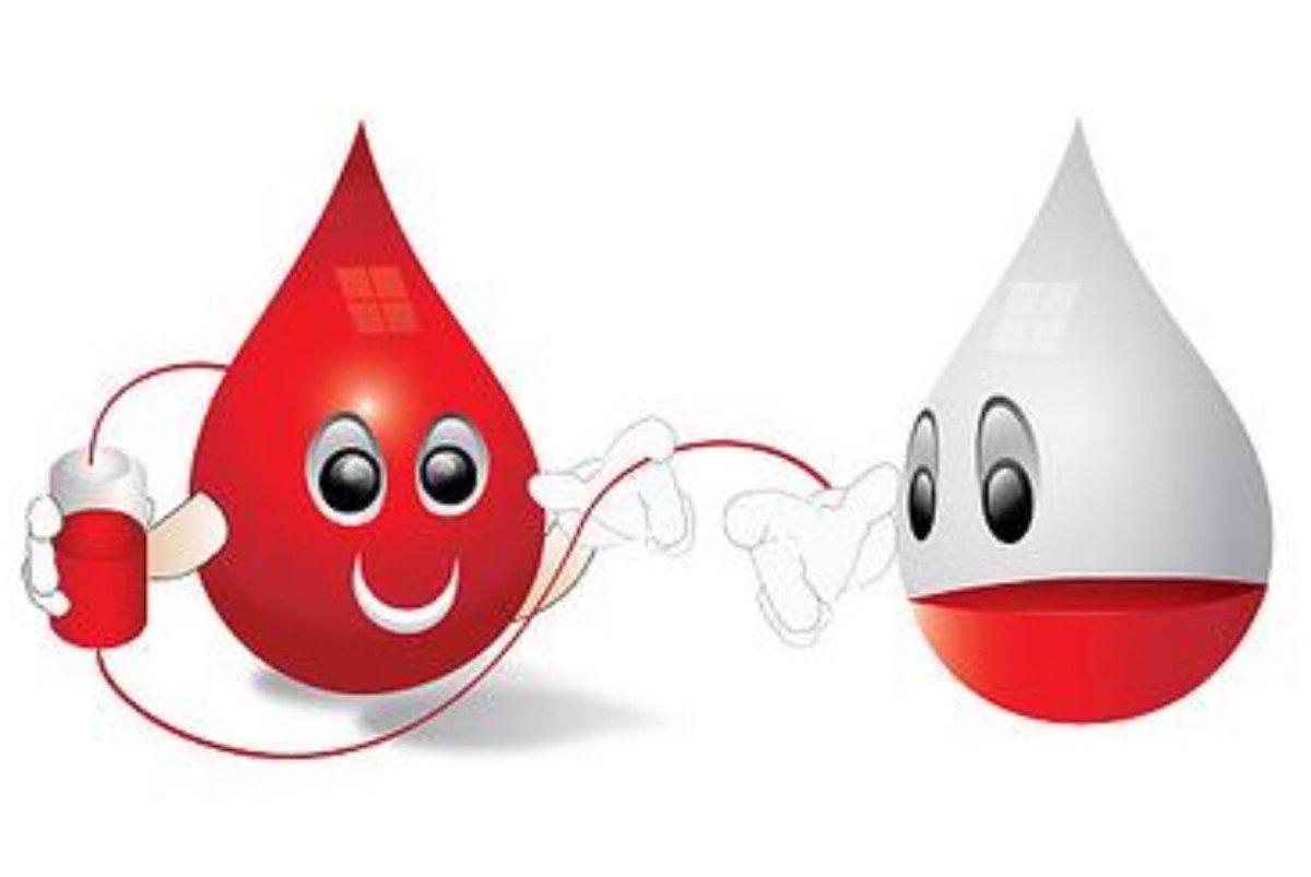 Nhóm máu O có thể cho và nhận nhóm máu nào? (Ảnh:Internet)