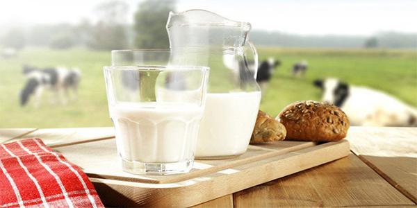 Sử dụng nhiều các sản phẩm từ sữa bò không tốt cho người nhóm máu O (Ảnh:Internet)