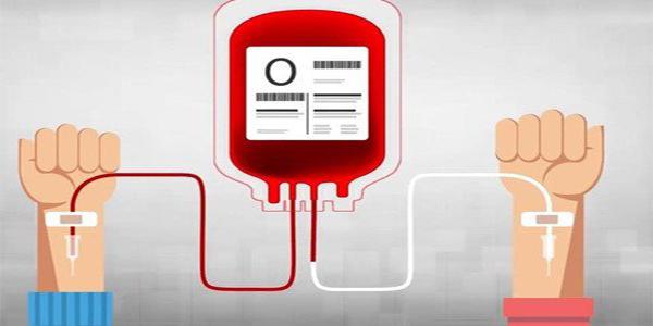 12 sự thật về nhóm máu O (Ánh:Internet)
