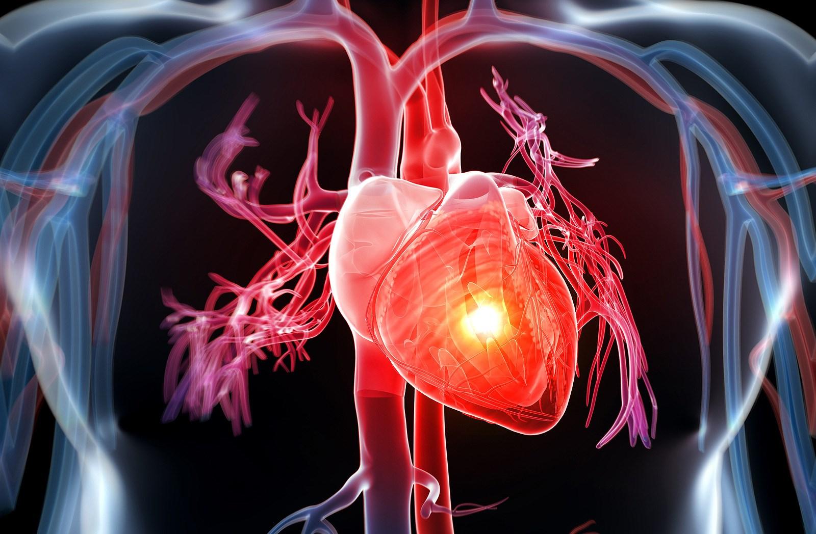 Bệnh tim mạch, kè thù lớn nhất của con người (Nguồn hình ảnh: Internet)